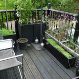 Which decking? - Page 1 - Homes, Gardens and DIY - PistonHeads