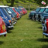 day cooper pistonheads mini