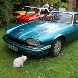 COOL CLASSIC CAR SPOTTERS POST! (Vol 3) - Page 114 - Classic Cars and Yesterday's Heroes - PistonHeads